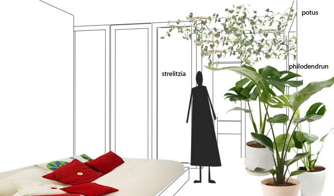 Casa con giardino d 39 inverno ristrutturazione a roma - Giardino d inverno permessi ...